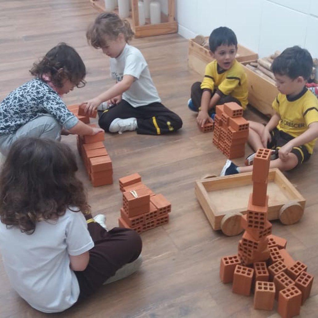 Brincar e Construir