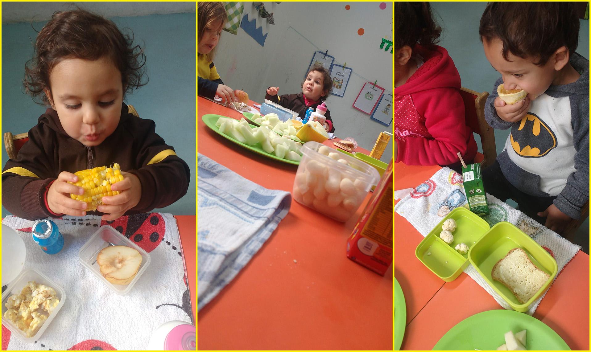 As linguagens no momento da alimentação na escola – Sabores, aromas e cores