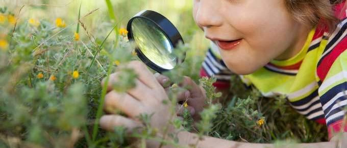 6 razões para presentear as crianças com mais natureza