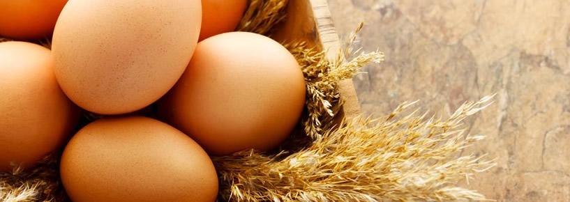 Descubra os alimentos essenciais no cardápio das grávidas