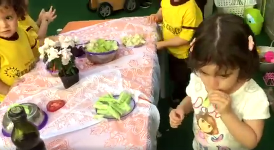 Vídeos – Mesa de legumes e verduras